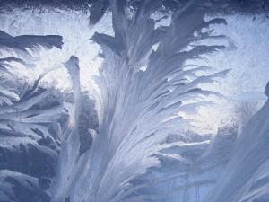 Kopie - Malované okno vytvořila sama příroda